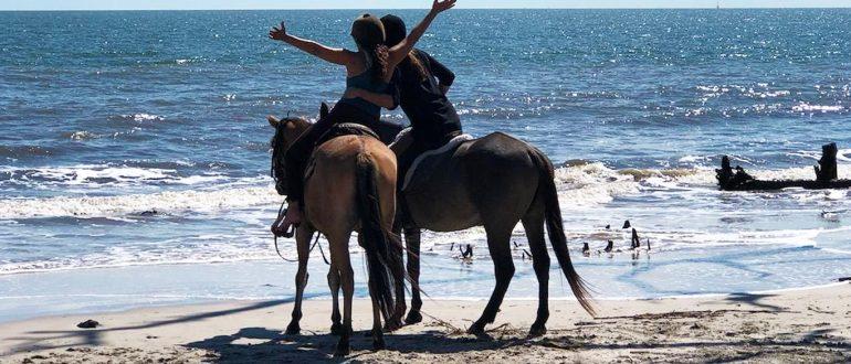 HORSEBACK RIDING ON THE BEACH DAUFUSKIE ISLAND